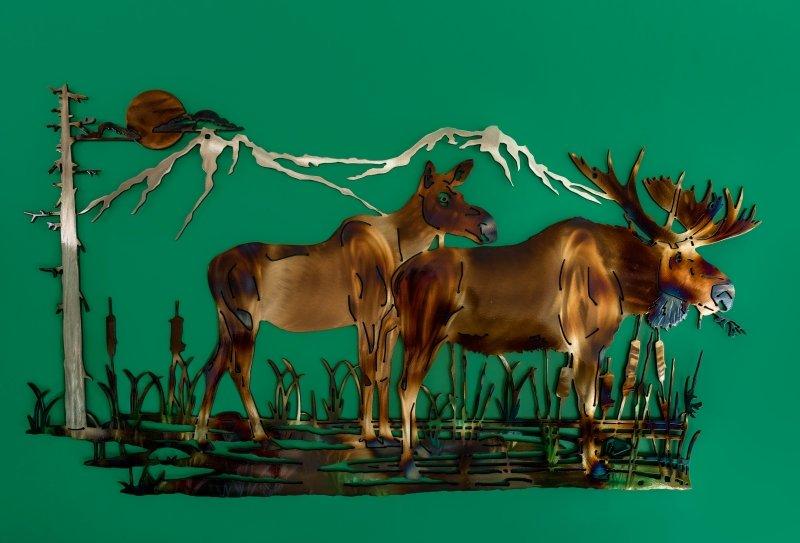 Moose pair in swamp